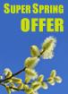 Super Spring OfferIreland